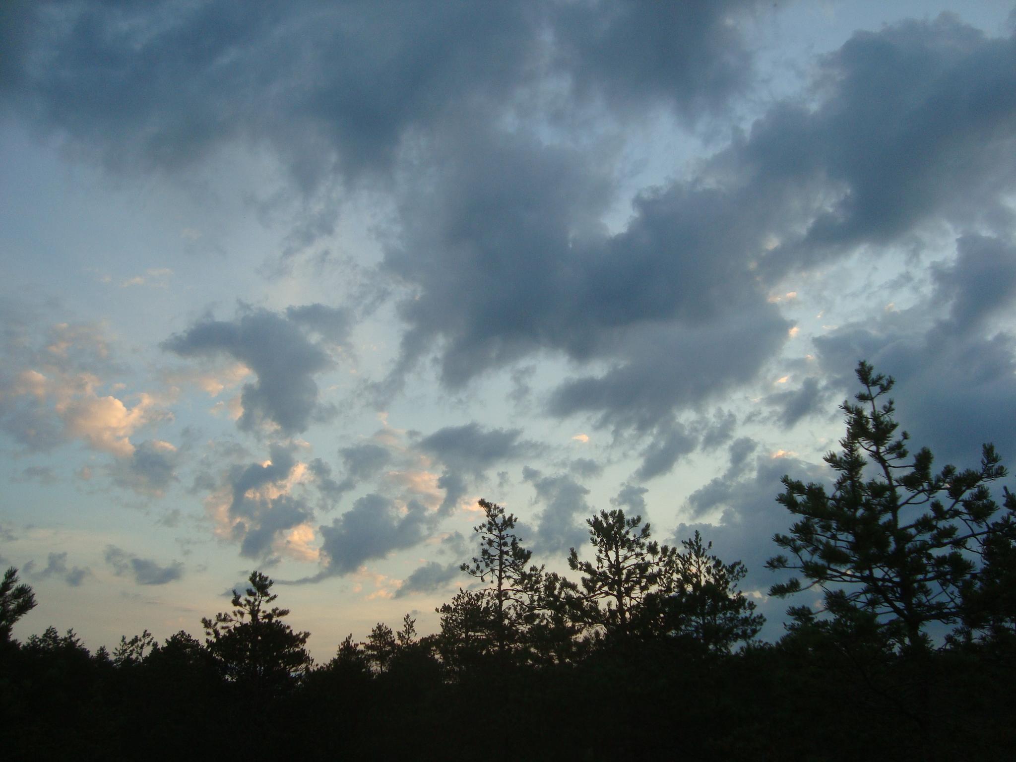 pic-094